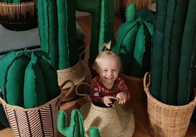 Kid friendly kaktus